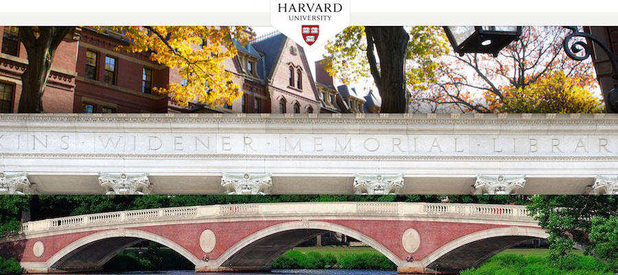 harvard honors thesis Harvard college the thesis project if the only reason you want to write a thesis is to graduate with honors a guide to writing a senior thesis in.